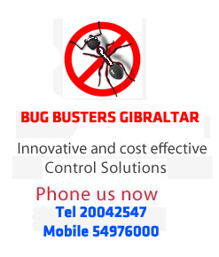 Gibraltar Bug Busters Pest Control Control services